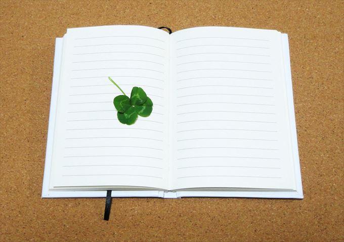 日記 書き方 項目_R